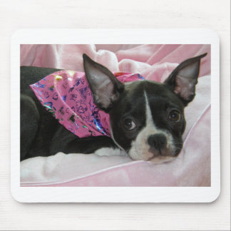Cute Boston Terrier Puppy Mouse Pad