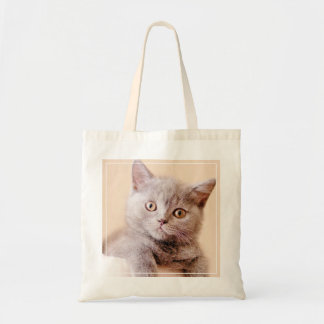 Cute British Shorthair Cat Budget Tote Bag