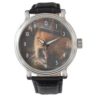 Cute Brown Horse Nose Watch