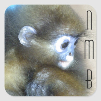 Cute brown monkey initials NMB No Monkey Business Square Sticker