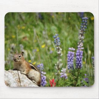 Cute Brown White Chipmunk Mousepad