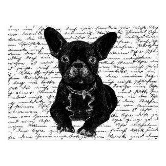 Cute bulldog postcard
