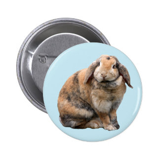 Cute bunny rabbit lop-eared button pin gift idea