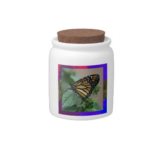 CUTE butterfly insect nature kids children family Candy Jar