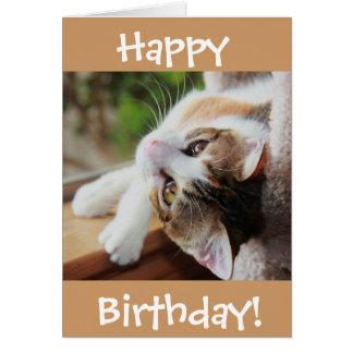 Cute Calico Cat Birthday Card, purr-fect day! Card