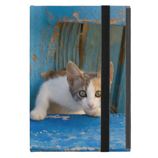 Cute Calico Cat Kitten Funny Curious Eyes Photo -_ Cover For iPad Mini