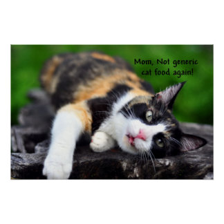 """Cute Calico Cat, """"Not Generic Food Again!"""" Poster"""
