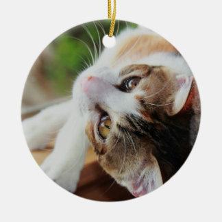 Cute Calico Kitten Christmas Ornament