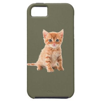 Cute Calico Kitten iPhone 5 Case