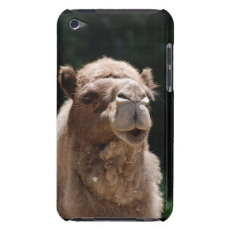 Cute Camel iPod Touch Cases