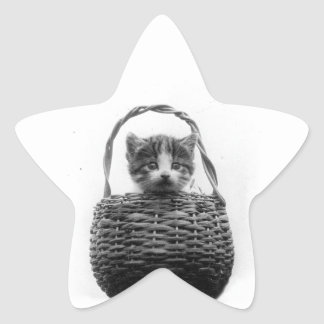Cute Cat in a Basket Vintage Photo Star Sticker