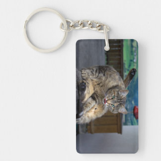 Cute Cat Interrupted While Grooming Key Chain