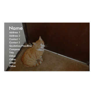 Cute Cat Near The Door On The Carpet Business Card Templates