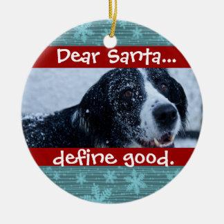 Cute Cat or Dog Pet Christmas Photo Ornament