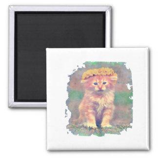 cute cat painted magnet design