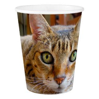 Cute Cat paper cups