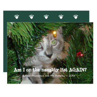 Cute Cat Photo Christmas Card Add Your Pet Photo