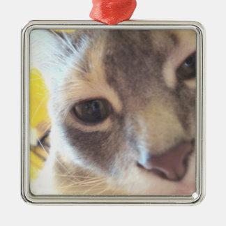 Cute Cat Silver-Colored Square Decoration