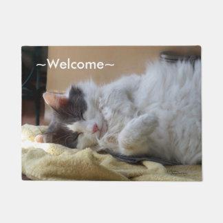 Cute cat sleeping Spiegeland Welcome Doormat