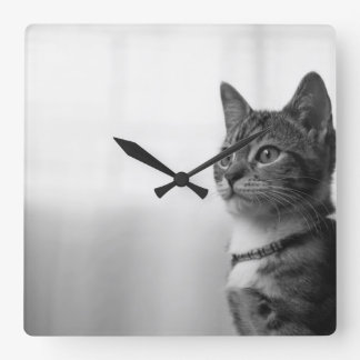 Cute Cat Square Wall Clock