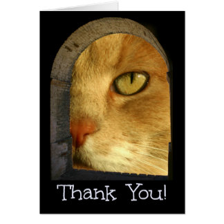 Cute Cat Thank You For Pet Sitting Card
