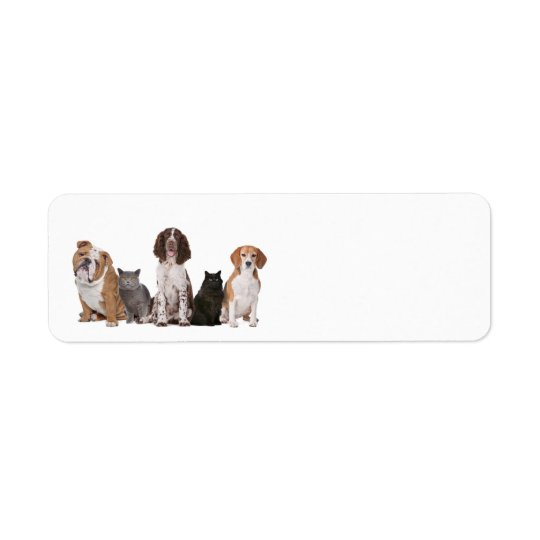 Cute cats and dogs return address label