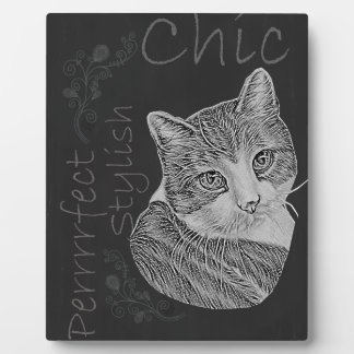 Cute Chalk Cat with Green Eyes and Tilted Head Plaques