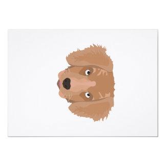 Cute cheeky Puppy Card