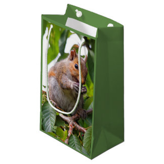 Cute Cherry Picking Eastern Grey Squirrel Small Gift Bag