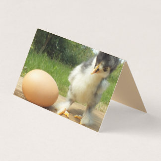 Cute chick with chickens office business card