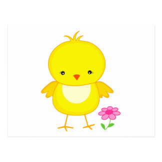 Cute chick with flower postcard