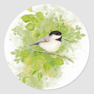 Cute Chickadee Bird in Poplar Tree Classic Round Sticker