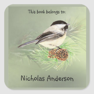 Cute Chickadee Bird & Pine Nature Art Bookplate Square Sticker