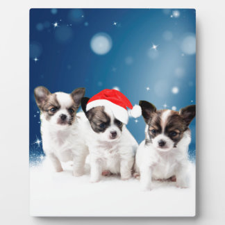 Cute Chihuahua Puppies with Santa Hat Christmas Plaque