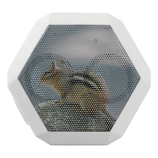 Cute Chipmunk White Boombot Rex Bluetooth Speaker