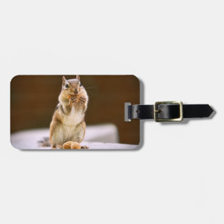 Cute Chipmunk Eating a Peanut Luggage Tag