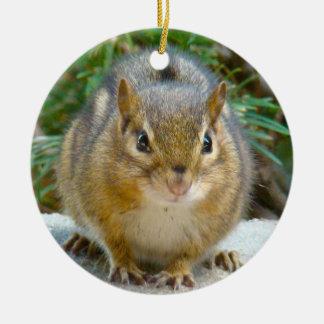 Cute Chipmunk Has His Eye On You Ceramic Ornament