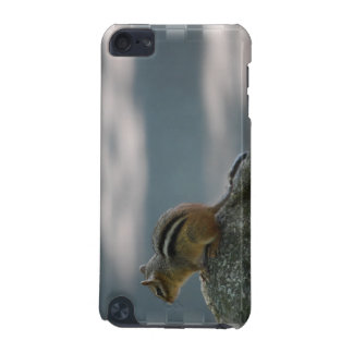 Cute Chipmunk iTouch Case iPod Touch 5G Cover