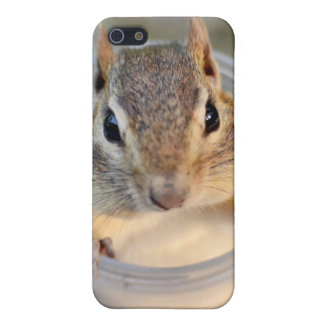 Cute Chipmunk Sitting in a Food Container iPhone 5/5S Cover