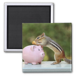 Cute Chipmunk with Funny Money Piggy Bank Picture Refrigerator Magnet