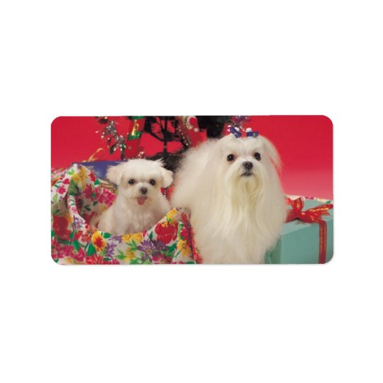 Cute Christmas Dogs Puppies Label Stickers