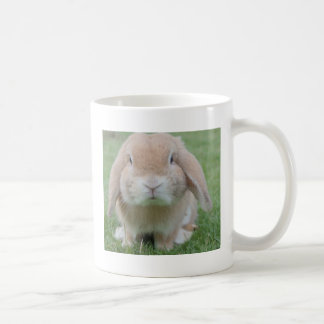Cute Chubby Bunny Coffee Mug