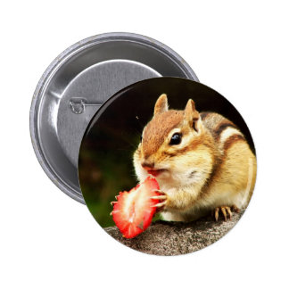Cute Chubby Chipmunk with Strawberry 6 Cm Round Badge