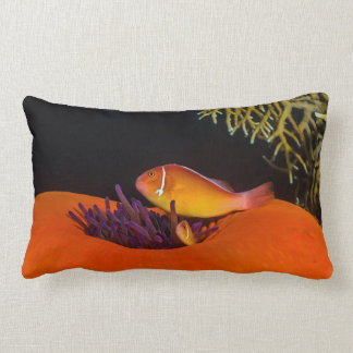 Cute Clownfish on the Great Barrier Reef Lumbar Pillow