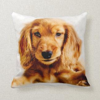 Cute Cocker Spaniel Puppy Cushion