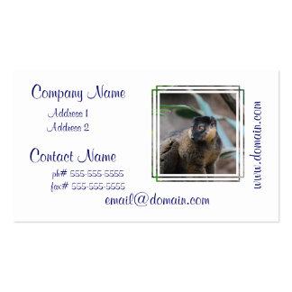Cute Collared Lemur Business Card