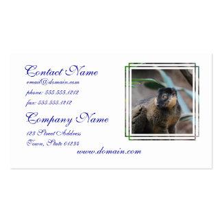Cute Collared Lemur Business Card Template