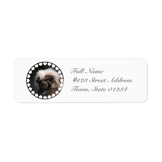Cute Cotton Topped Tamarin Mailing Labels