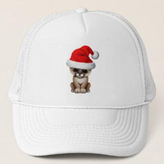 Cute Cougar Cub Wearing a Santa Hat