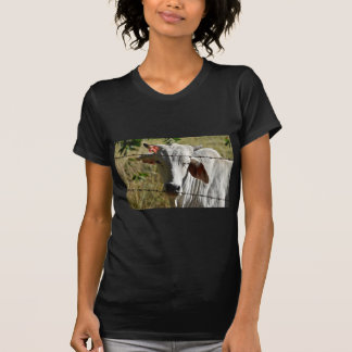 CUTE COW RURAL QUEENSLAND AUSTRALIA T-Shirt